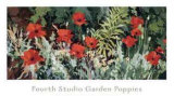 Fourth Studio Garden Poppies