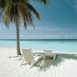 Palm Tree and Beach Chair Papier Photo