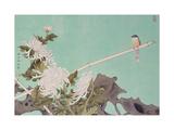 Chrysanthemum and Bird