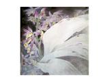 Flower Seires II - Phaiuses