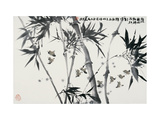 Birds Returning Bamboo Forest