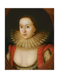 Portrait of Frances Howard (1590-1632) Countess of Somerset  circa 1615