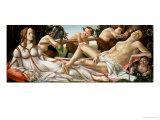 Venus and Mars  circa 1485