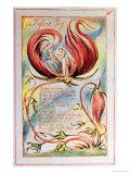 Songs of Innocence  Infant Joy  1789