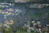 Waterlilies: Green Reflections  1914-18 (Left Section)