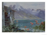 Ferritet  Lake Geneva  1882