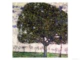 The Apple Tree  1916