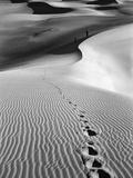 Footprints on Desert Dunes Papier Photo par Bettmann