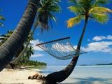 Hammock Hanging Seaside