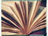 Open Book No3