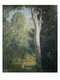 Painting of Birch Trees in Forest by Julian Alden Weir