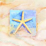 Étoiles de mer Reproduction d'art par Paul Brent