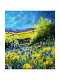 blue corn flowers in ver village ardennes