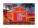 Amazon River Houseboat