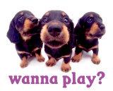 Wanna Play