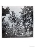 """A Street in Papeete  from """"Tahiti """" Published in London  1882"""