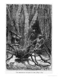 """The Spider Crab  Illustration from """"20 000 Leagues under the Sea"""""""