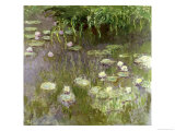 Waterlilies at Midday  1918