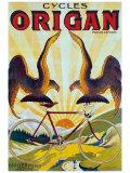 Cycles Origan