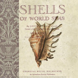 Shells of the World