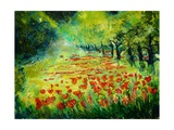 Red poppies 68