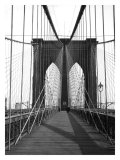 New York  Brooklyn Bridge Cable