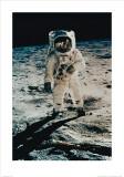 Astronaut Edwin Aldrin on the Moon  Apollo 11  July c1969