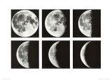 Moon Cycle  Japan