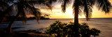 Kohala Coast  Hawaii  USA