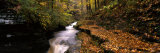 Buttermilk Creek  Ithaca  New York State  USA