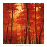 Vermilion Wood