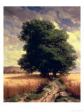 Landscape with Oaks  1859