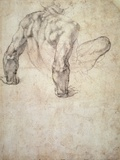 W63R Study of a Male Nude  Leaning Back on His Hands