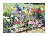 Midsummer Day's Garden I
