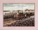 Cotton Pickers