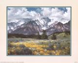 Rocky Mountain Peaks