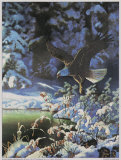Eagle in Winter Scene