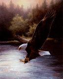 Eagle Prey