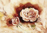 Rose Shadow I