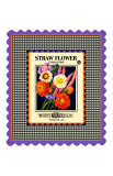 Strawflower Seed Pack