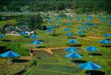 Umbrellas No 14  1991