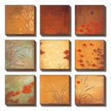 Neuf taches de couleur avec coquelicots Tableau multi toiles par Don Li-Leger