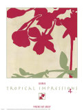 Tropical Impressions IV