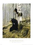 Dans les Adirondacks (ours et ourson) Reproduction d'art par Michael Coleman