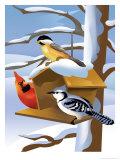 A Bluebird  Cardinal  and Finch Sitting by a Birdfeeder