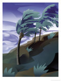 Palm Trees Bending in the Wind of a Hurricane