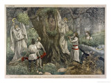In a Forest Near Chartres France Druids Collect Mistletoe for Ritual Purposes
