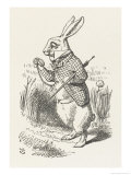 The White Rabbit Checks His Watch