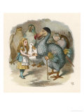 Alice and the Dodo