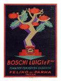 Italian Boschi Luigi Tomato Sauce Poster